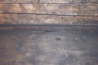 dry ice blasting mold remediation